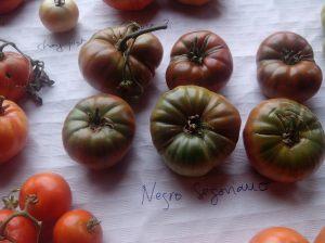 En cada territorio disponemos de muchas y buenas variedades locales